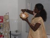 Eine halbierte Kokosnuss als Modell des menschlichen Auges